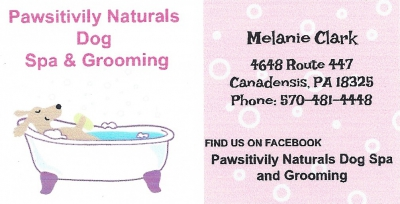 Pawsitively Naturals Dog Spa & Grooming