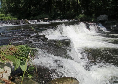 HIKE EVENT: New trail leads to waterfall at Paradise-Price Preserve