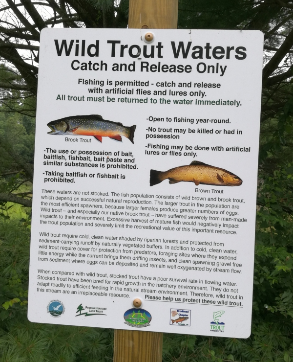 Trout Fishing - Brodhead Creek in Barrett Township (Public Access)