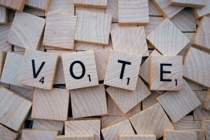 Municipal Election: Township Supervisors 2017