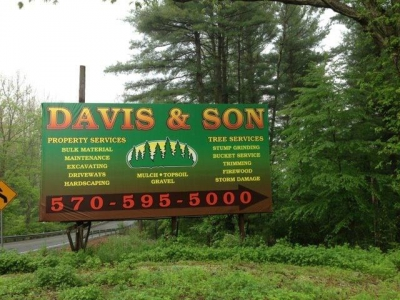 Davis & Son (Property / Tree Services)
