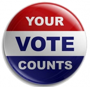 2015 Township Supervisor Election Information